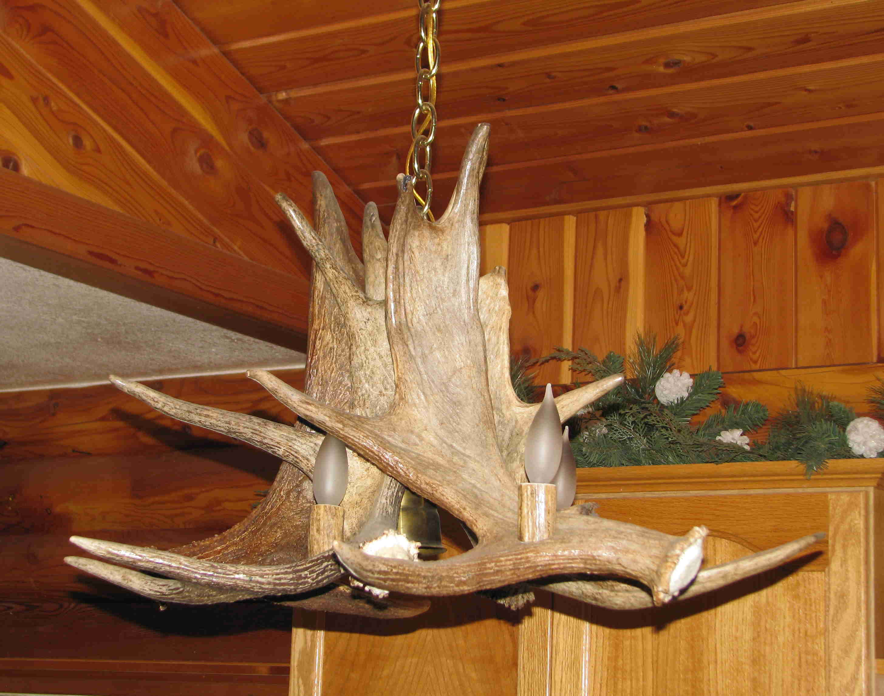 Antler Art Hunting In Montana
