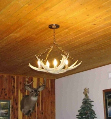 <h5>Small Mule Deer Antler Chandelier</h5>