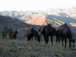<h5>2011</br>Wilson Elk Hunt</h5><p>9/22/2011</p>