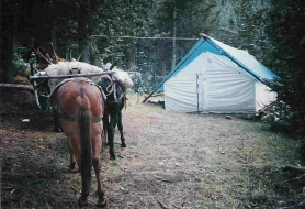 <h5>Blacktail Archery Camp</h5><p>2004 </p>