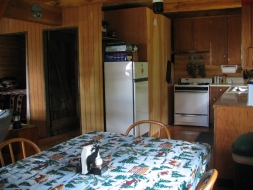 <h5>Cabin Kitchen</h5>