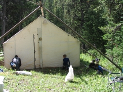 <h5>Blacktail Camp</h5>