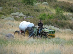 <h5>Weed Control</h5><p>08/15/2011 </p>