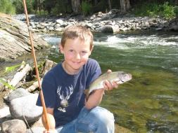 <h5>Mill Creek Fish</h5>