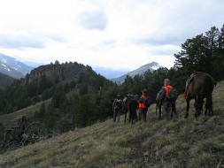 <h5>High Country Hunting  </h5><p>5/18/2005</p>
