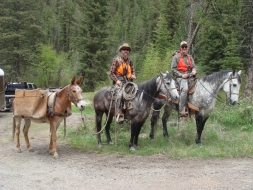<h5>Randy and Dave Hackney</br>ready for a great day bear hunting!  </h5><p>5/21/2012</p>