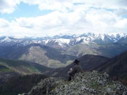 <h5>2009</br>Huizenga Bear Hunt  </h5><p>5/25/2009</p>