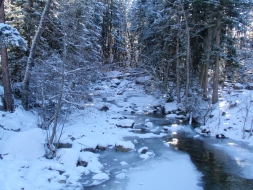 <h5>Elbow Creek</h5>