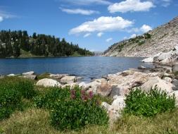 <h5>West Boulder Lake...</h5>