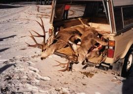 <h5>1987</br>Miller & Smith Bucks</h5>