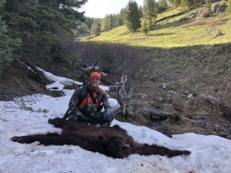 <h5>Trophy Backcountry Bear</h5>