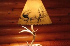 Whitetail Antler Lamp
