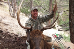 Raymond Gentry Club Bull! / Livingston, MT