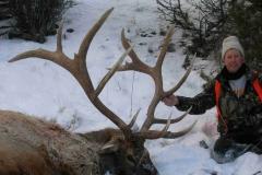 Bruce Lay / Gardiner Late Hunt Bull