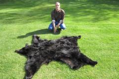 Moeller Bear Rug