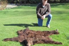 Meekma Bear Rug