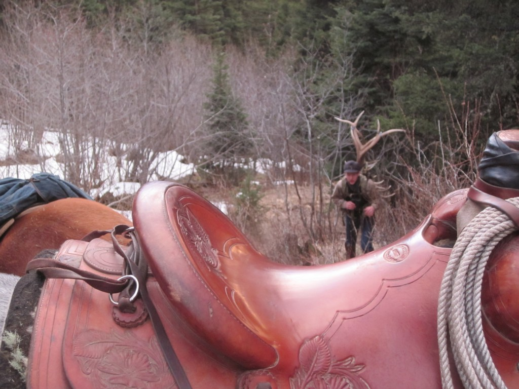 Hunting Sheds horseback in the Springtime in the MT mountains