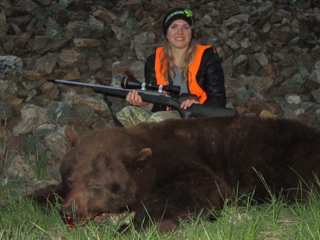 Spring Black Bear Hunting in Montana-Hunter harvests giant record book boar